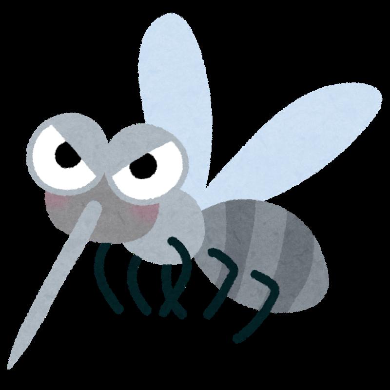 ついに蚊に悩まされる日々が終わった!蚊がいなくなるスプレーの感想