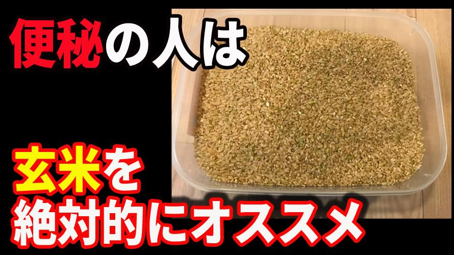 玄米を絶対的にオススメする唯一無二の理由は便秘の改善である!