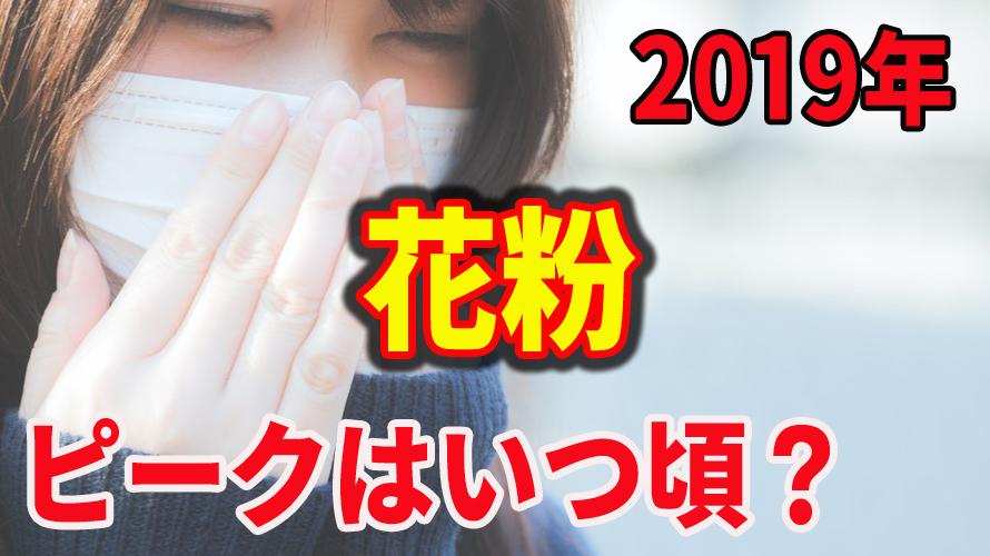 花粉症が今年もやってきた!2019年の花粉のピークはいつ頃?