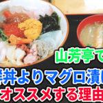 米子の山芳亭では海鮮丼ではなくマグロの漬け丼をオススメする理由